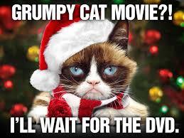 Christmas Grumpy Cat Meme - 127 best grumpy cat xmas images on pinterest funny stuff grumpy