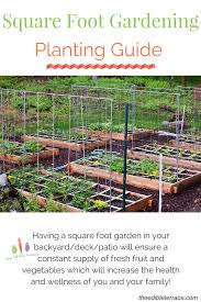 Squar Foot Square Foot Gardening Archives The Edible Terrace