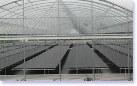 Metal Greenhouse Benches Plastic Greenhouse Bench Dura Bench Original Southwest Agri
