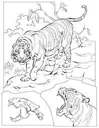 animaux sauvages de la jungle 168 animaux u2013 coloriages à imprimer