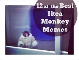 Ikea Monkey Meme - 12 of the best ikea monkey memes monkey memes memes and doge