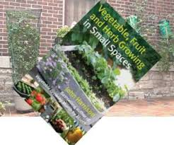container gardening container vegetable growing