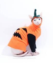 Pumpkin Costume Halloween Cat Pumpkin Costume Halloween Pet Sweater Simplysphynx