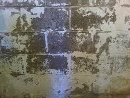 leaking concrete block foundations waterproofing repair