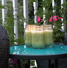 natural lemongrass mosquito repellent candle set of 3 free