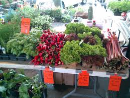 farmers markets florida farmers markets directory find and