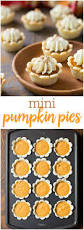pumpkin pie bites recipe mini pumpkin pies mini pumpkins and