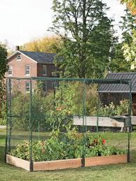 Backyard Fx Pest Free Garden Complete Kit With Crop Cage Gardeners Com