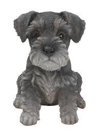 pet pals mini schnauzer puppy resin garden ornament 9 49