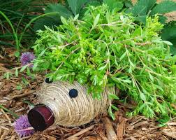 cute diy hedgehog planter made from a plastic bottle