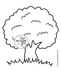 tree printable coloring page eson me