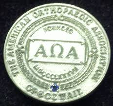 item detail aoa member pin