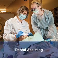Minnesota travel assistant images M state dental jpg