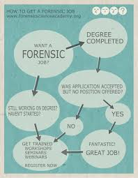 sharing forensic tips and fun facts forensic tips and fun facts