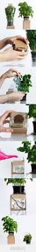 Home Design Products Anderson by 270 Best Grow Images On Pinterest Design Packaging Package