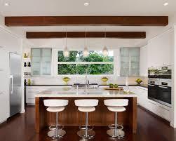 Kitchen Windows Design by Large Kitchen Window Houzz