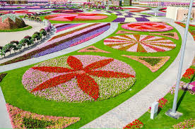awesome flowers garden city flower garden exhibition in dubai