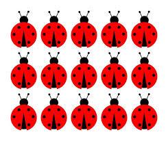 181 best fiesta mariquita images on pinterest ladybug lady bug