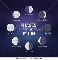 moon phases stock images royalty free images vectors