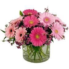 gerbera bouquet bouquet vase of pink gerbera daisies