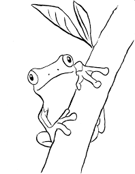 sheets tree frog coloring 47 free coloring book tree