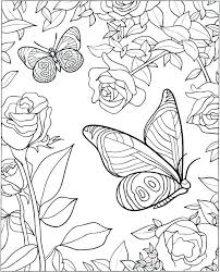 detailed butterfly coloring pages for adults butterfly coloring pages adults detailed for page radiorebelde info