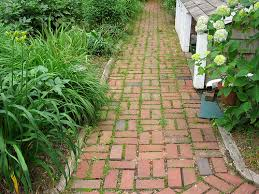 Choosing The Right Paver Color Walkway Materials Guide Top Ideas Designs Install It Direct