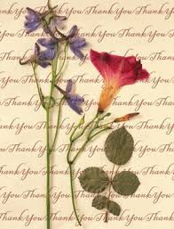 religious thank you cards christian thank you greetings for cards crafts giftware thank