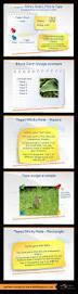 best 20 powerpoint examples ideas on pinterest powerpoint