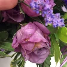 florist dallas all occasions florist 15 photos 48 reviews florists 3428