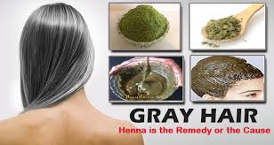 african american henna hair dye for gray hair henna is the remedy or the cause of grey hairs