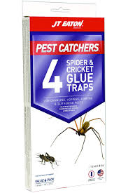 amazon com jt eaton 844 pest catchers large spider and cricket