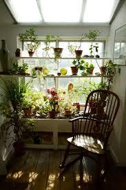 window herb gardens kitchen inspiring diy ideas of window herb garden for your kitchen
