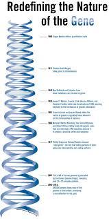 55 best biology genetics images on pinterest genetics science