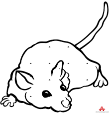 mouse pictures free clip art library