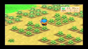 Harvest Moon by Harvest Moon Back To Nature My Best Farm Youtube