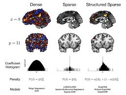 Human Brain Mapping The Graph Constrained Elastic Net Graphnet