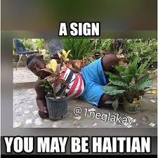 Haitian Meme - funny page haitian memes 1neglakay instagram photos and videos