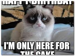 Grumpy Cat Meme Happy - grumpy cat happy birthday meme rusmart org