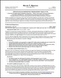Sample Objective Statements For Resumes A Good Resume Objective Statement Resume Examples Objectives