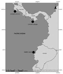 Uconn Storrs Map Notoraja Martinezi Sp Nov A New Species Of Deepwater Skate And