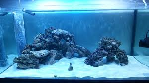 Reef Aquascape Aquascaping Show Your Skills Archive Page 4 Reef Central