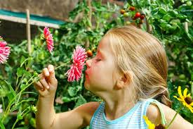 cute preschooler portrait with natural flowers stock photo