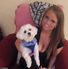 bichon frise therapy dog woman u0027s beloved bichon frise is u0027attacked and killed u0027 by an