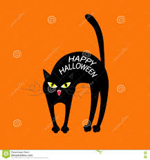 happy halloween funny picture cat arch back happy halloween greeting card yellow eyes fangs