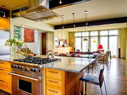 Contemporary Kitchen Living Room Designs Combine Kitchengraceful - Living room and kitchen design