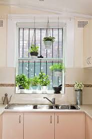 Indoor Herb Planters by Best 25 Indoor Hanging Planters Ideas On Pinterest Hung Vs