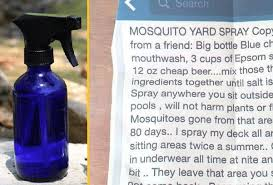 Mosquito Spray For Backyard by 28 Mosquito Spray For Backyard Lawn Yard Mosquito Flea Tick