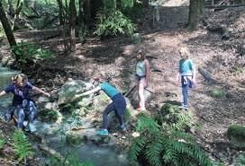 bay area hikes kids