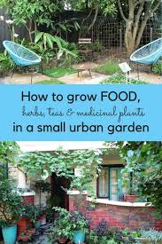 Small Urban Garden - how much food can you grow in a small urban garden the middle